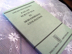 Cover of Pagan Survivals