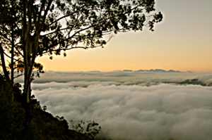 Zomba Above the Clouds